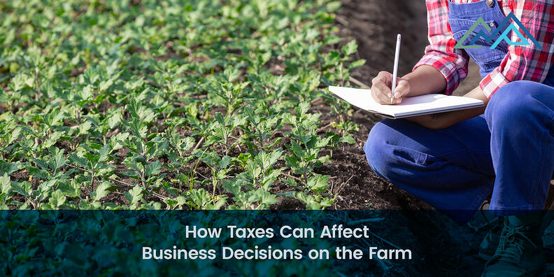 How Taxes Can Affect Business Decisions on the Farm - 1