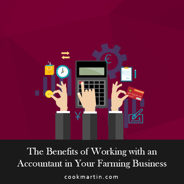 The Benefits of Working with an Accountant in Your Farming Business